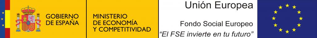 logo_meinn_fse_geiseq[1]